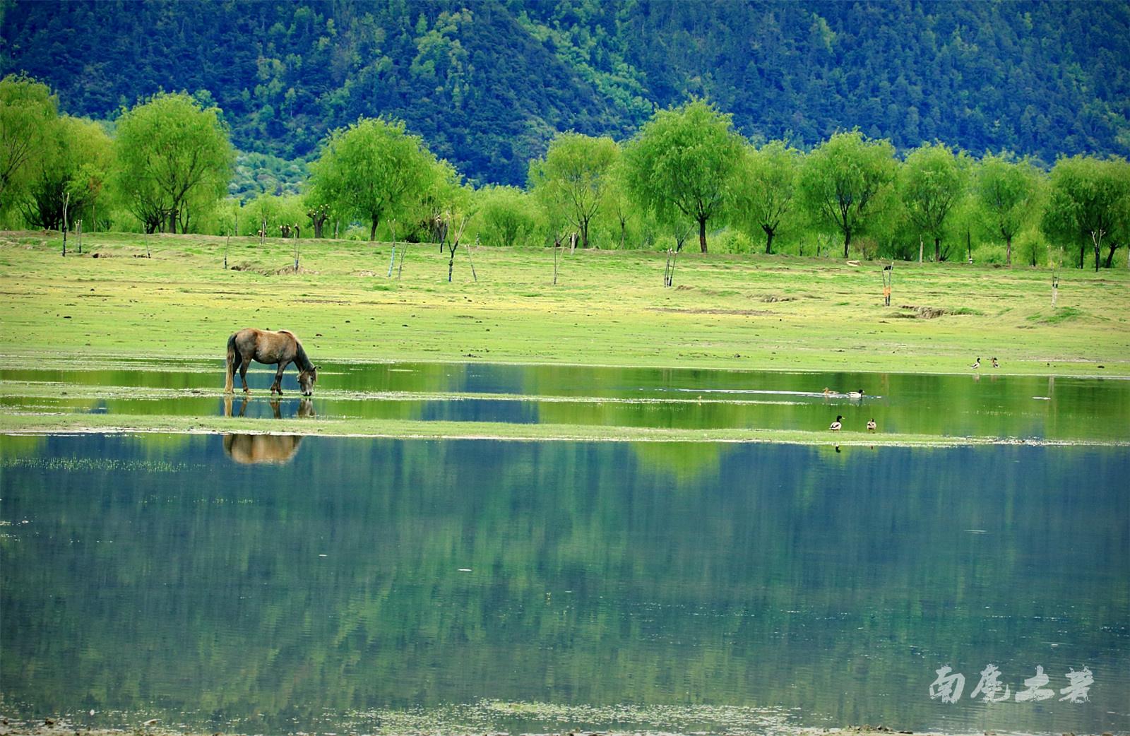 壁纸 风景 山水 摄影 桌面 1600_1042