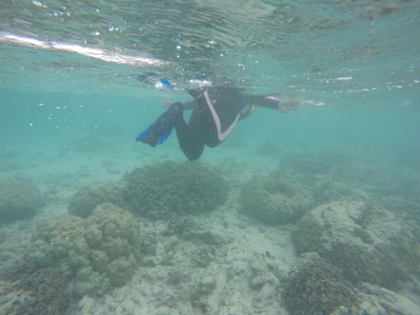 马尔代夫的库拉马提岛攻略