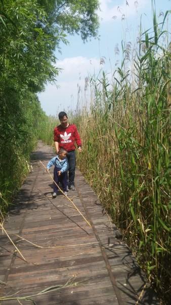 个多小时就到了焦岗湖生态旅游度假区,位于 -坑爹的焦岗湖 焦岗湖