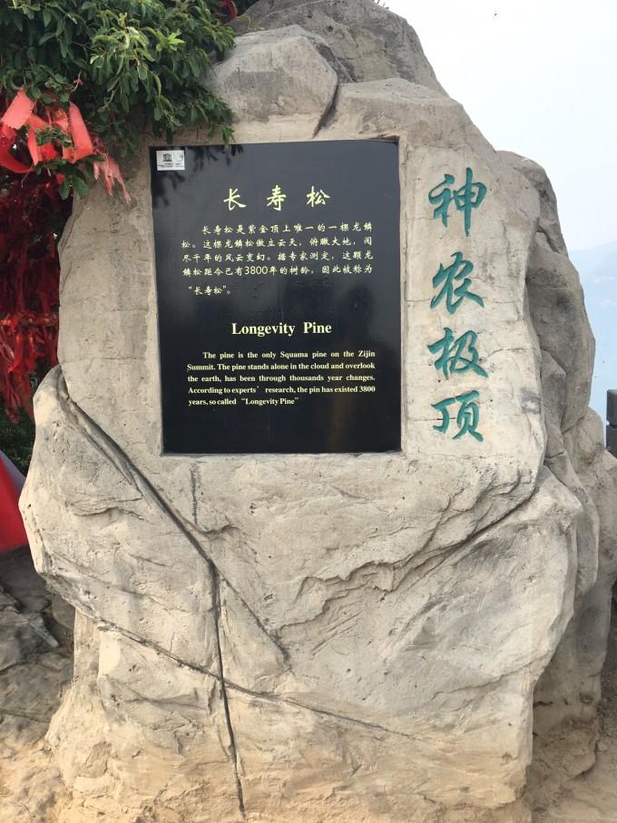 神农山风景区是国家aaaaa级旅游区,位于河南省焦作沁阳市紫陵镇赵寨
