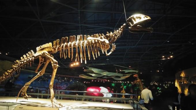 常州动物园,恐龙园亲子游