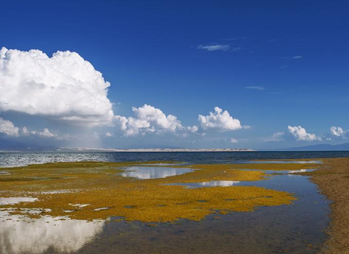 魅力青海湖,神秘大敦煌----甘青大环线