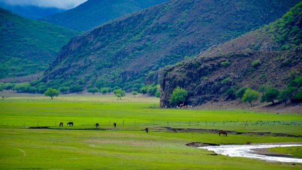 内蒙古自治区旅游 科尔沁旅游攻略 科尔沁草原旅游攻略  提起内蒙古