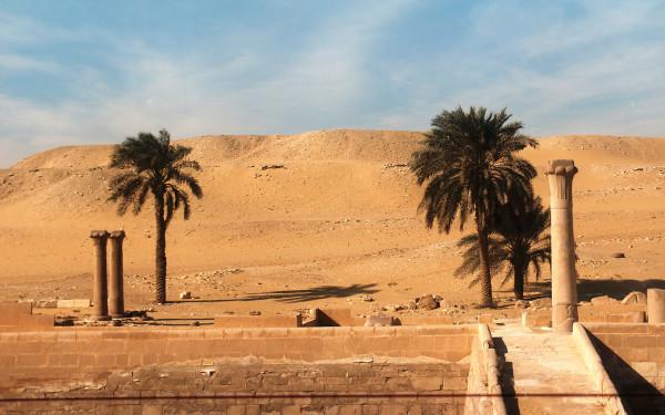 埃及灭绝动物图片