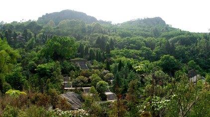 广安佛手山风景区门票
