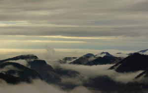【阿里山图片】漫步云端赏枫去--阿里山