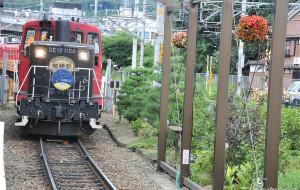 日本娱乐-岚山小火车