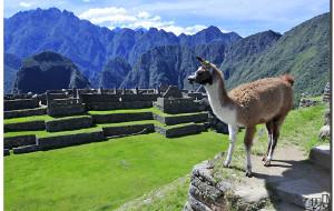 【秘鲁图片】绝顶之巅上无与伦比的印加水利工程【寻古访今秘鲁行(13)】