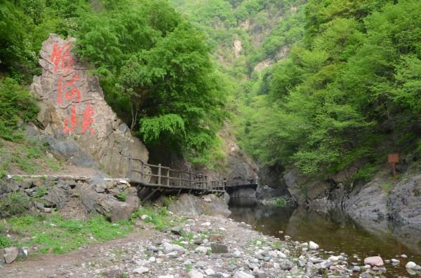 济源黄河三峡小沟背王屋山游记 - 沁园绿竹 - 沁园绿竹