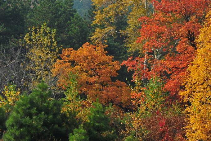 内蒙赤峰市旺业甸--美林谷自然风景区