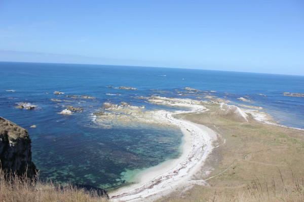新西兰 南岛 基督城附近 海边小镇 kaikoura 凯库拉