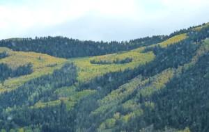 【科罗拉多州图片】多彩科罗拉多州