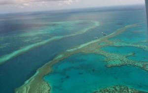 【大堡礁图片】【2014年8月】重游澳大利亚(艾尔斯岩-大堡礁-白天堂沙滩)