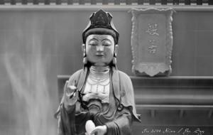 【扶风图片】我眼中的法门寺 / 西安城剪影