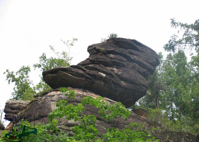 汤旺河林海奇石风景区一日游