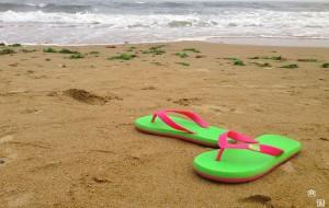 【抚宁图片】对大海独有的那份眷恋----南戴河休闲3日游
