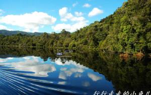 【澳大利亚图片】#消夏计划#塔斯马尼亚——盛开在尘世间一朵纯净自然的奇葩