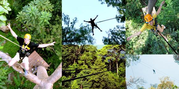 【丛林飞跃】普吉岛·flying hanuman丛林飞跃体验(多