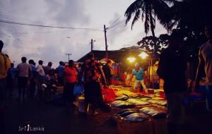 【努沃勒埃利耶图片】【菩萨凝视的岛屿】从亭可马里到亚当峰,3月的斯里兰卡,一场旅行的缘分