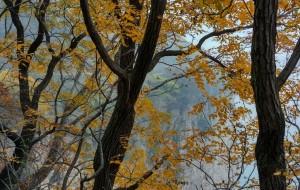 【太行山图片】南太行120KM徒步扫黄