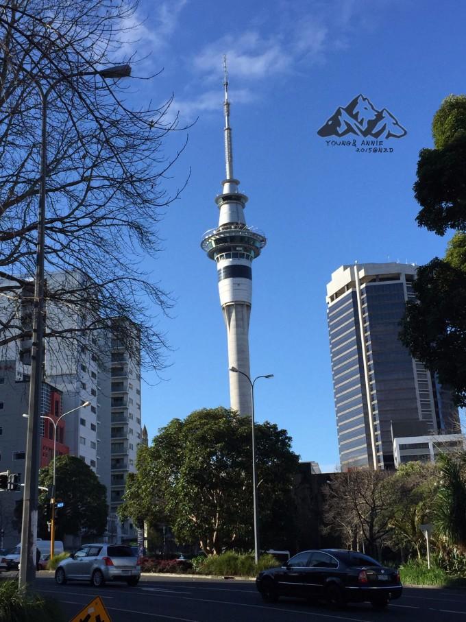 【宝藏纪念】最美的风景叫自由——10天新西兰南岛画个圈