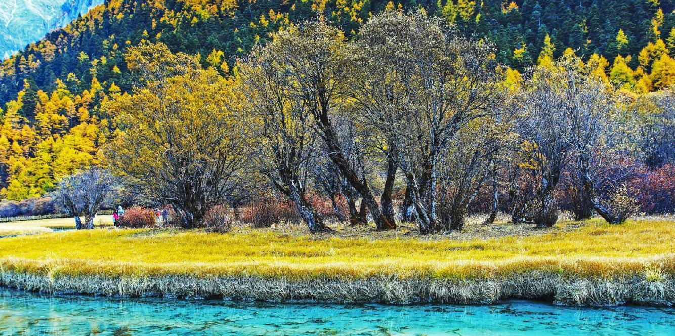 西藏民族风景高清图片