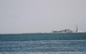 【塘沽图片】#游记小赛#万物都没来得及复苏的天津海滨