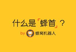 什么是【蜂首】?