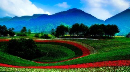 重庆红池坝国家森林公园门票
