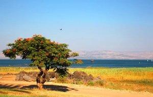 【耶路撒冷图片】初次见面---约旦、以色列;日久生情---地中海沿岸(下篇)