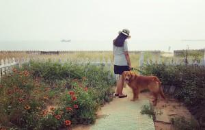【抚宁图片】中秋带狗自驾游——南戴河福来岛+昌黎黄金海岸