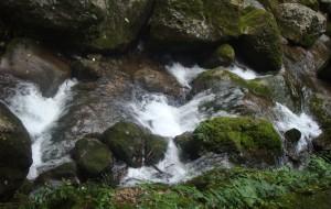 【青城山图片】【一个人的版图】(133)——【此间的山水】(都江堰、青城山)