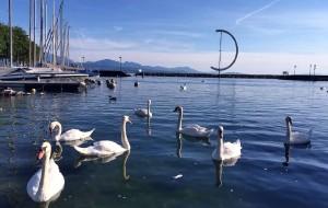 【依云图片】世界的明信片 ----瑞士
