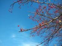10月国庆长假,一个人的秋季童话之旅